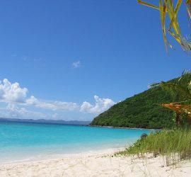 caribbean-investing